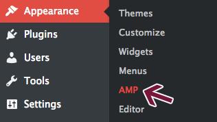 Customize AMP appearance