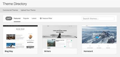Free WordPress theme installation