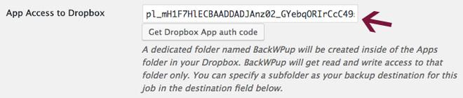 Paste app access code in BackWPup settings