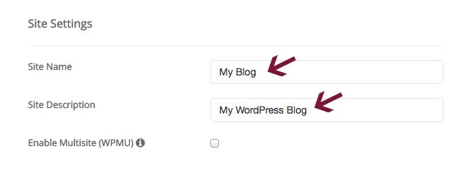 Site settings in Softaculous WordPress installer