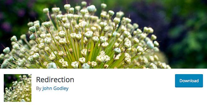 Redirection plugin to setup redirects in WordPress