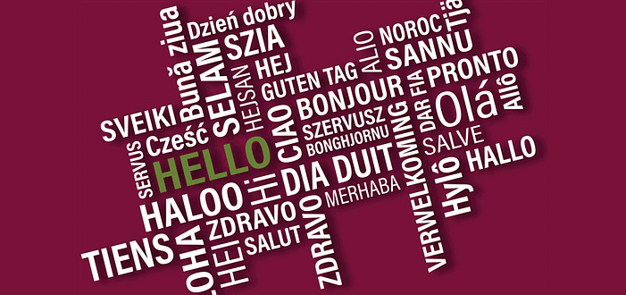 Make your WordPress site multilingual with Polylang.